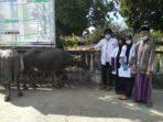Mahasiswa KKN Unsyiah Lakukan Pemeriksaan Kesehatan Hewan Qurban